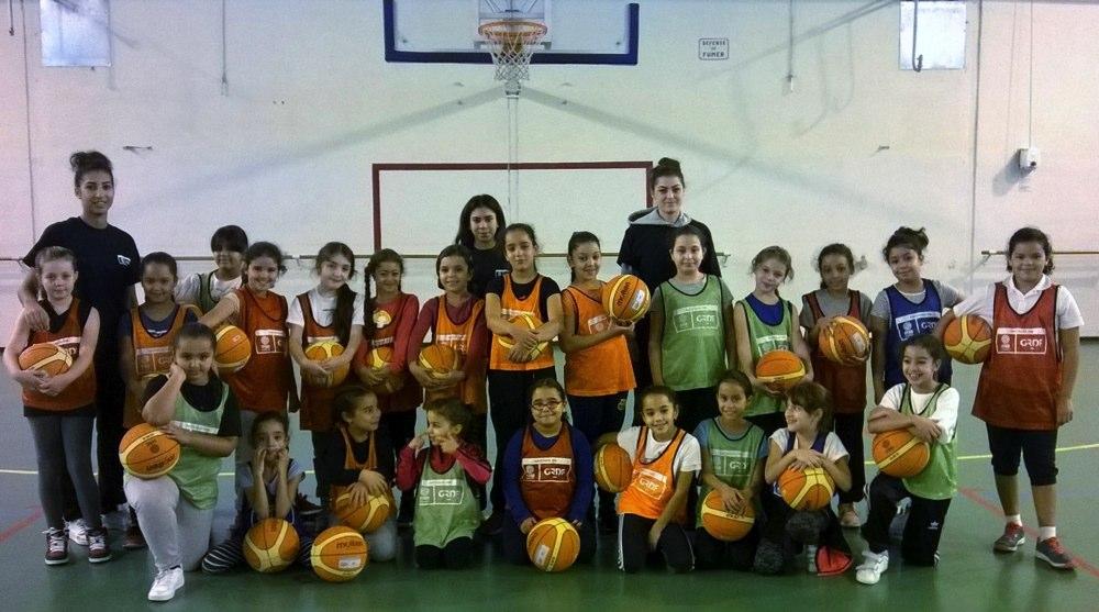 avignon basket
