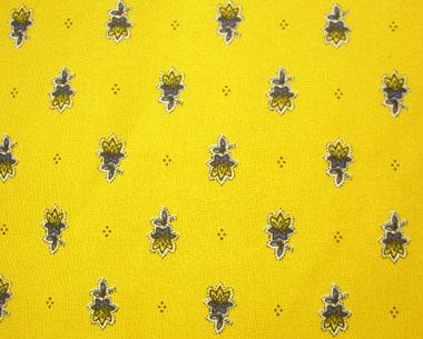 avignon yellow
