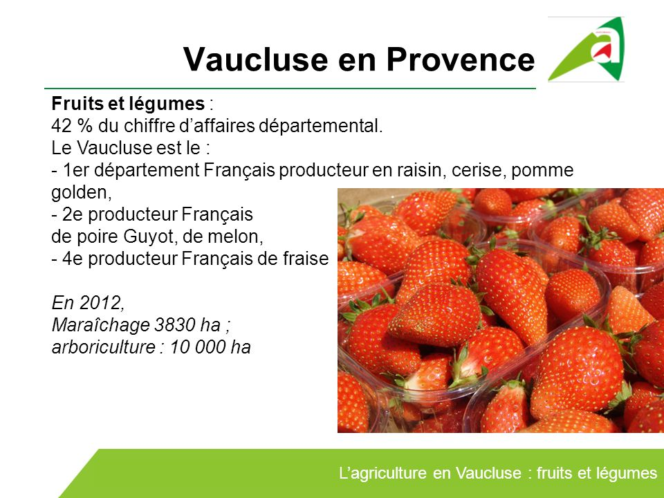 vaucluse fruits
