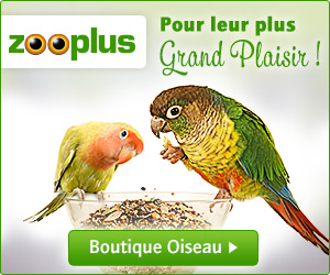 zooplus vaucluse
